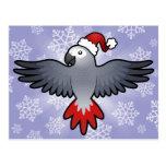 Christmas African Grey / Amazon / Parrot Postcard