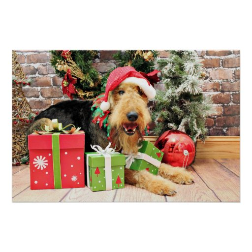 Christmas - Airedale - Kizzle Posters
