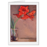 Christmas Amaryllis Cards