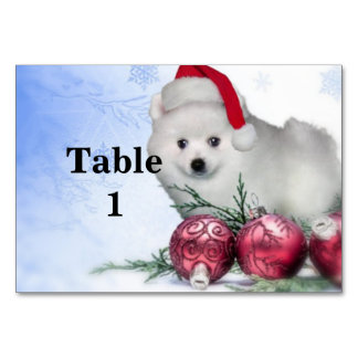 Christmas American Eskimo puppy Table Cards