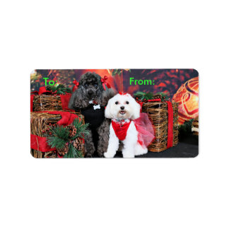 Christmas - Amiche Poodle - Tinkerbell Maltese Label