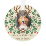Christmas Antlers For Dog / Cat Personalize Photo Ornament