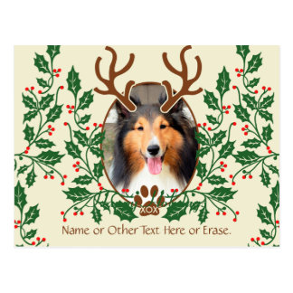 Christmas Antlers For Dog / Cat Personalize Photo Postcard