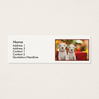 Christmas Argentine Dogo puppies Mini Business Card