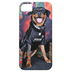 Christmas - Athena - Rottweiler iPhone SE/5/5s Case