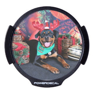 Christmas - Athena - Rottweiler LED Window Decal