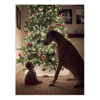 Christmas Baby and Dog Best Friend Postcard