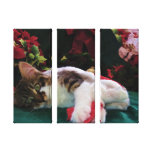 Christmas Baby Kitty Cat, Large Eyed Kitten Alone Canvas Prints