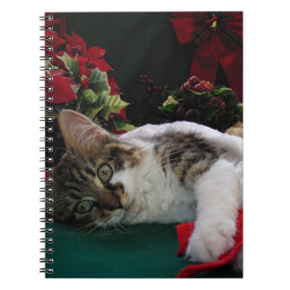 Christmas Baby Kitty Cat, Large Eyed Kitten Alone Notebook