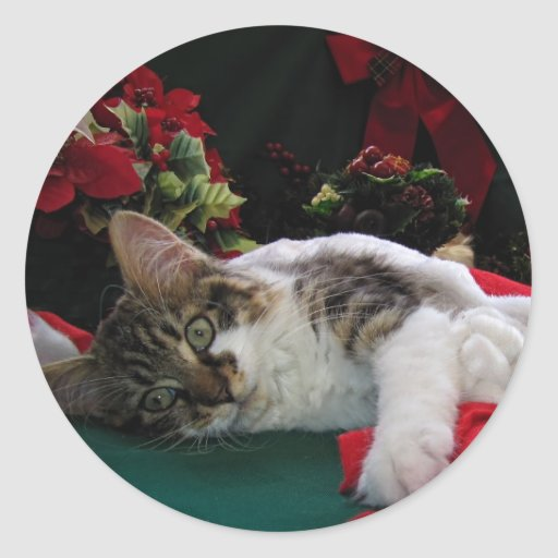 Christmas Baby Kitty Cat, Large Eyed Kitten Alone Round Sticker