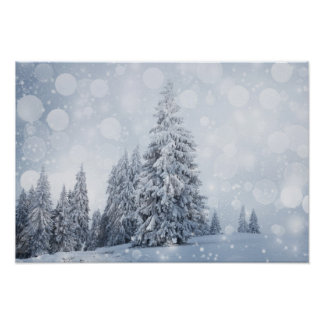 Christmas Background With Snowy Fir Trees Posters