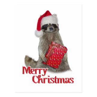 Christmas Bandit Raccoon with Present Postcard