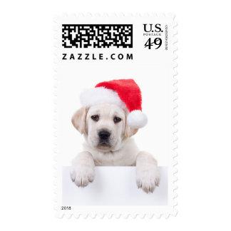 Christmas Banner Dog Stamp