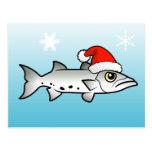 Christmas Barracuda Santa Post Cards