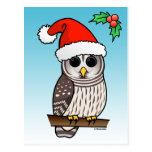 Christmas Barred Owl Santa Postcard