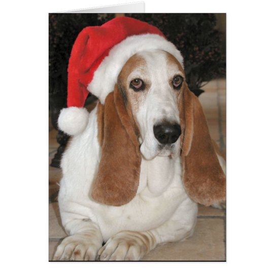 Christmas Basset Card Blank Inside