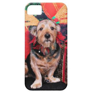 Christmas - Basset Hound X iPhone 5 Cases