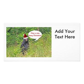 Christmas Bear Photo Greeting Card