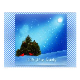Christmas beauty snowy scene postcard