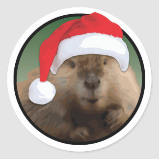 Christmas Beaver - Classic Round Sticker, Glossy Classic Round Sticker
