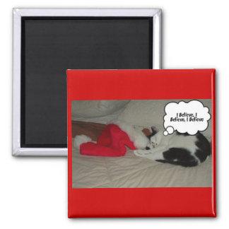 Christmas Believe Black and White Kitten Magnets