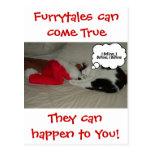 Christmas Believe Black and White Kitten Postcard