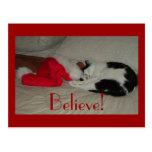 Christmas Believe Kitty Cat Postcard