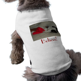 Christmas Believe kitty cat T-Shirt