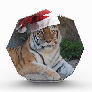 Christmas Bengal Tiger Acrylic Award