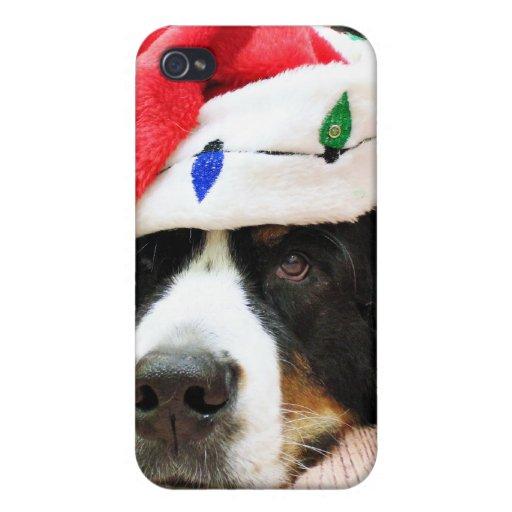 Christmas - Bernese Mountain Dog - Mya iPhone 4/4S Covers