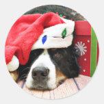 Christmas - Bernese Mountain Dog - Mya Stickers