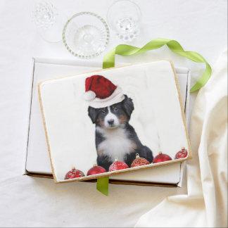 Christmas Bernese Mountain Dog Shortbread Cookie