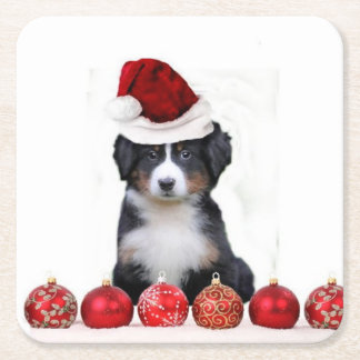 Christmas Bernese Mountain Dog Square Paper Coaster