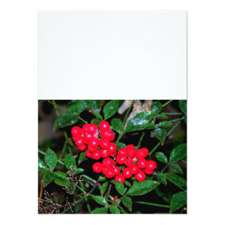 Christmas Berries 5.5x7.5 Paper Invitation Card