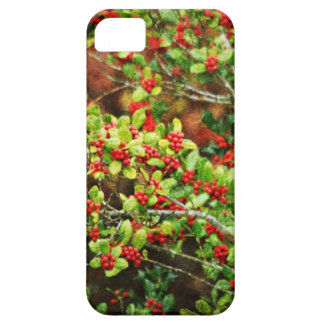 Christmas Berries iPhone 5 Covers