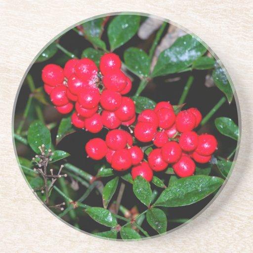 Christmas Berries Drink Coasters