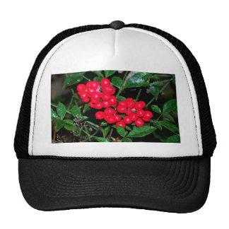 Christmas Berries Trucker Hat