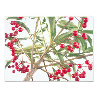 Christmas Berry 5.5x7.5 Paper Invitation Card