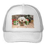 Christmas - Bichon Frise - Missy Trucker Hat