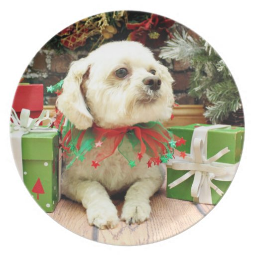 Christmas - Bichon Frise - Woody Party Plate