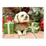 Christmas - Bichon Frise - Woody Postcard