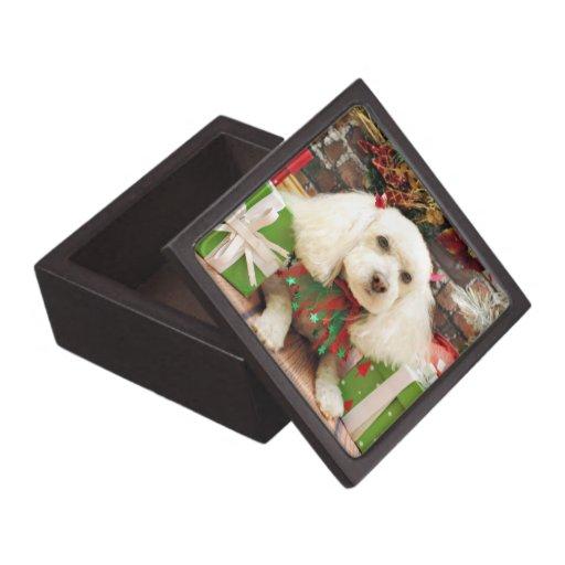 Christmas - Bichon Frise X - Katie Premium Keepsake Box