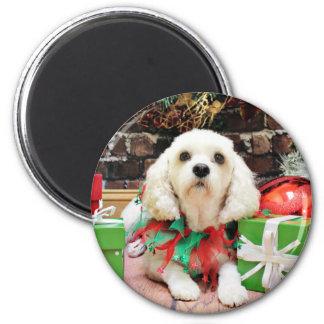 Christmas - Bichon Frise X - Maya Refrigerator Magnets