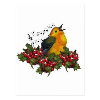 Christmas Bird Singing With Hollly, Berries Postcard
