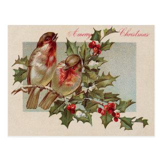 Christmas Bird Songbird Holly Snow Postcard