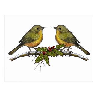 Christmas Birds, Face to Face, Holly, Original Art Postcard