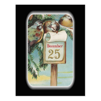 """Christmas Birds"" Postcard"