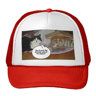 Christmas Black and White Cat Humor Hats