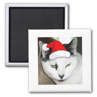 Christmas Black and White Kitten Magnet