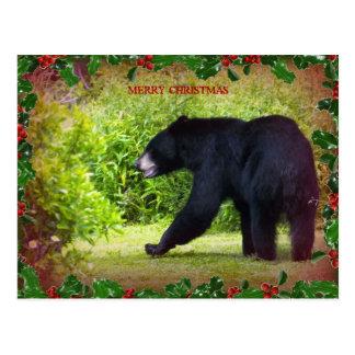 Christmas Black Bear post card